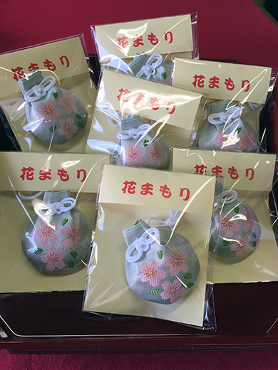 花守り 桜 2