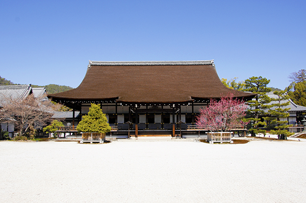 Shinden Hall_1