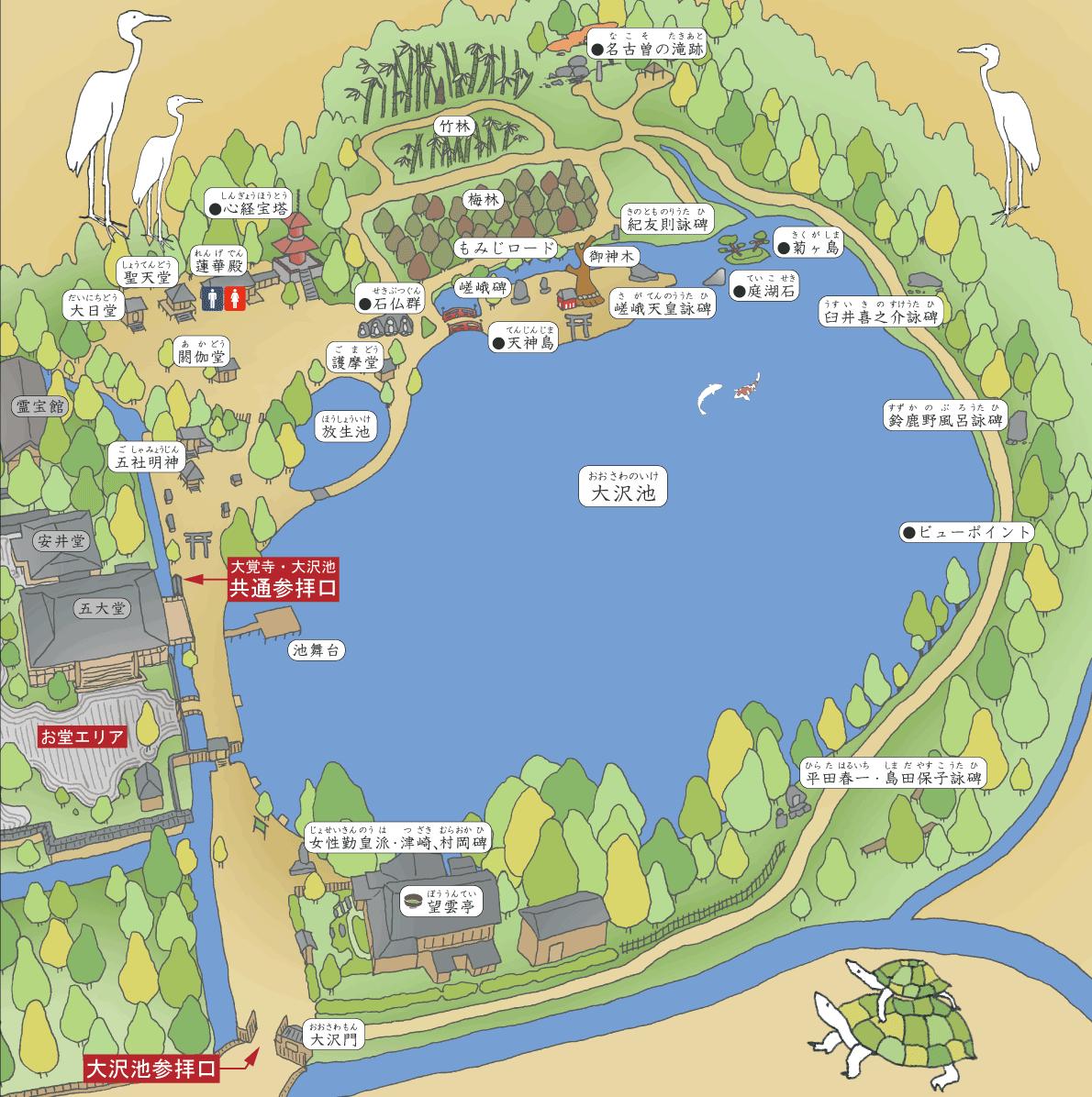 大沢池エリア境内図